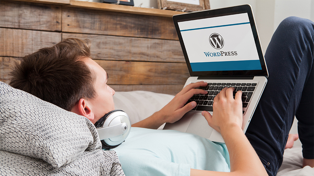 Employee at Chicago Wordpress Consulting Company Typing On Computer