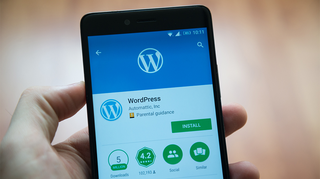 Chicago Wordpress Consulting Company Wordpress on Mobile Phone